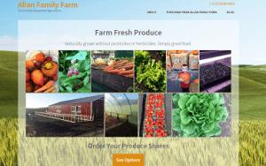 Website client portfolio new website