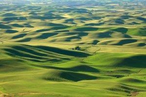 Rolling hills landscape in Palouse